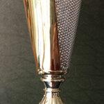 coppa rappresentativa del premio